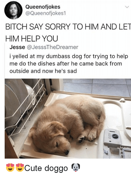 dogging: Queenofjokes  @Queenofjokes1  BITCH SAY SORRY TO HIM AND LET  HIM HELP YOU  Jesse @JesssTheDreamer  i yelled at my dumbass dog for trying to help  me do the dishes after he came back from  outside and now he's sad 😍😍Cute doggo 🐶