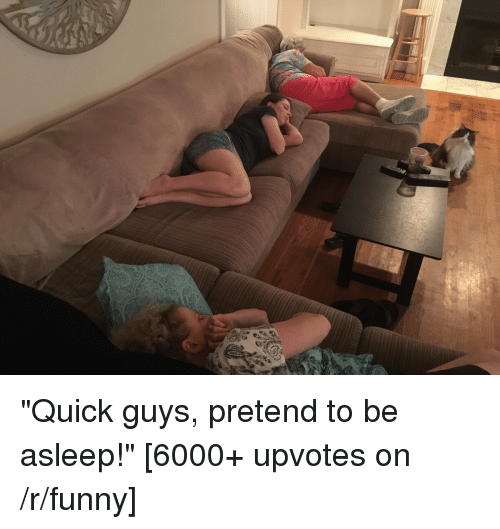 """Thathappened: """"Quick guys, pretend to be asleep!"""" [6000+ upvotes on /r/funny]"""