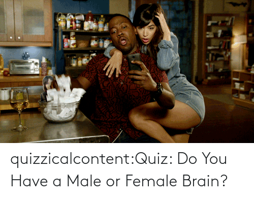 male: quizzicalcontent:Quiz: Do You Have a Male or Female Brain?