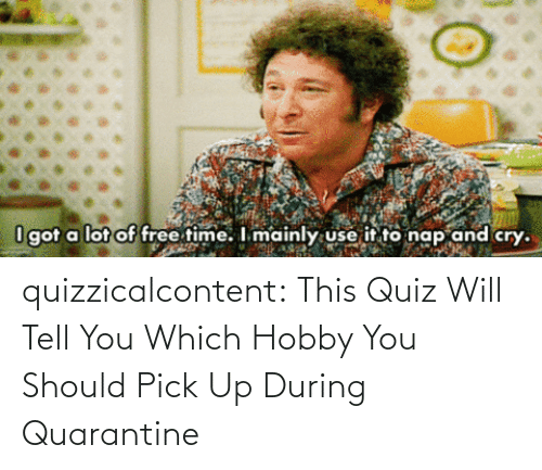 You Should: quizzicalcontent:    This Quiz Will Tell You Which Hobby You Should Pick Up During Quarantine