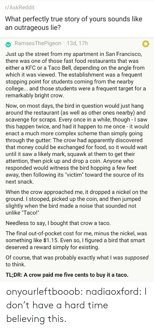 "Toward: r/AskReddit  What perfectly true story of yours sounds like  an outrageous lie?   RamsesThePigeon 13d, 17h  Just up the street from my apartment in San Francisco,  there was one of those fast food restaurants that was  either a KFC or a Taco Bell, depending on the angle from  which it was viewed. The establishment was a frequent  stopping point for students coming from the nearby  college... and those students were a frequent target for a  remarkably bright crow  Now, on most days, the bird in question would just hang  around the restaurant (as well as other ones nearby) and  scavenge for scraps. Every once in a while, though - I saw  this happen twice, and had it happen to me once - it would  enact a much more complex scheme than simply going  through the gutter: The crow had apparently discovered  that money could be exchanged for food, so it would wait  until it saw a likely mark, squawk at them to get their  attention, then pick up and drop a coin. Anyone who  responded would witness the bird hopping a few feet  away, then following its ""victim"" toward the source of its  next snack.  When the crow approached me, it dropped a nickel on the  ground. I stooped, picked up the coin, and then jumped  slightly when the bird made a noise that sounded not  unlike ""Taco!'  Needless to say, I bought that crow a taco.  The final out-of-pocket cost for me, minus the nickel, was  something like >l.T5. Even so, I figured a bird that smart  deserved a reward simply for existing  Of course, that was probably exactly what I was supposed  to think.  TL;DR: A crow paid me five cents to buy it a taco. onyourleftbooob:  nadiaoxford: I don't have a hard time believing this."