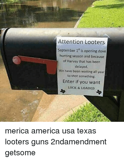 America, Dove, and Guns: r:  Attention Looters  September 1 is opening dove  hunting season and because  of Harvey that has been  delayed.  We have been waiting all year  to shot something  Enter if you want  LOCK & LOADED merica america usa texas looters guns 2ndamendment getsome