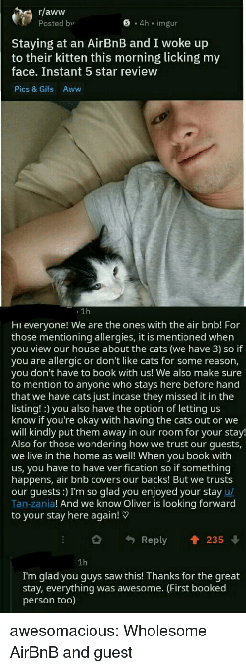 Missed It: r/aww  Posted bv  S 4h imgur  Staying at an AirBnB and I woke up  to their kitten this morning licking my  face. Instant 5 star review  Pics & Gifs Aww  1h  Hi everyone! We are the ones with the air bnb! For  those mentioning allergies, it is mentioned when  you view our house about the cats (we have 3) so if  you are allergic or don't like cats for some reason,  you don't have to book with us! We also make sure  to mention to anyone who stays here before hand  that we have cats just incase they missed it in the  listing! :) you also have the option of letting us  know if you're okay with having the cats out or we  will kindly put them away in our room for your stay!  Also for those wondering how we trust our guests,  we live in the home as well! When you book with  us, you have to have verification so if something  happens, air bnb covers our backs! But we trusts  our guests:) I'm so glad you enjoyed your stay u/  Tan-zania! And we know Oliver is looking forward  to your stay here again!  Reply 235  1h  I'm glad you guys saw this! Thanks for the great  stay, everything was awesome. (First booked  person too) awesomacious:  Wholesome AirBnB and guest