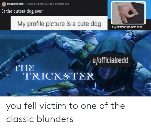 Cute, Dank Memes, and Dog: r/dankmemes Posted by u/officialredd 6 minutes ago  It the cutest dog ever  My profile picture is a cute dog  ufofficialredd  u/officialredd  THE  TRICKSTER you fell victim to one of the classic blunders