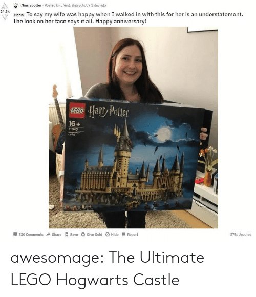 1 Day: r/harrypotter Posted by u/englishpsycho87 1 day ago  24.3k  u Media To say my wife was happy when I walked in with this for her is an understatement.  The look on her face says it all. Happy anniversary!  16+  71043  Cestie  530 ComShareSave Give Gold Hide Report  87% Upvoted awesomage:  The Ultimate LEGO Hogwarts Castle
