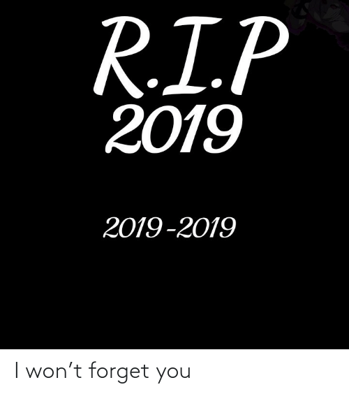 Forget: R.I.P  2019  2019-2019 I won't forget you