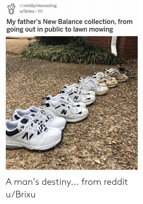 Dank, Destiny, and New Balance: r/mildlyinteresting  /brixu 6h  My father's New Balance collection, from  going out in public to lawn mowing A man's destiny...  from reddit u/Brixu