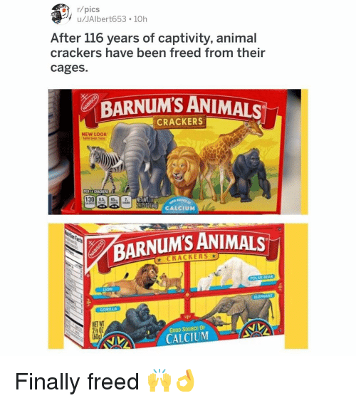 Animals, Memes, and Animal: , r/pics  u/JAlbert653 10h  After 116 years of captivity, animal  crackers have been freed from their  cages.  BARNUM'S ANIMALS  CRACKERS  NEW LOOK  Same Great Trte  31  130 05 851 7  NETWT,  206 CALCIUM  BARNUM'S ANIMALS  ★ CRACKERS ★  POLAR BEAR  LION  ELEPHANT  GORILLA  NET WT  GOOD SOURCE OF  CALCIUM Finally freed 🙌👌