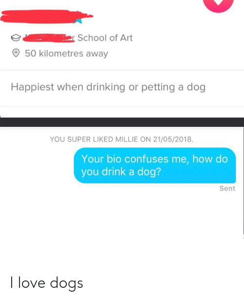 Love Dogs: r School of Art  50 kilometres away  Happiest when drinking or petting a dog  YOU SUPER LIKED MILLIE ON 21/05/2018.  Your bio confuses me, how do  you drink a dog?  Sent I love dogs