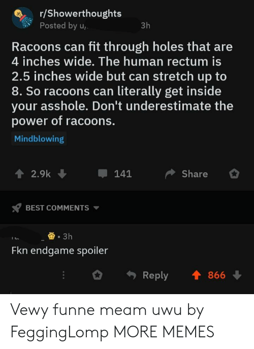 Dank, Memes, and Target: r/Showerthoughts  Posted by u  3h  Racoons can fit through holes that are  4 inches wide. The human rectum is  2.5 inches wide but can stretch up to  8. So racoons can literally get inside  your asshole. Don't underestimate the  power of racoons.  Mindblowing  Share  ↑ 2.9k  -141  BEST COMMENTS ▼  3h  Fkn endgame spoiler  Reply 1866 Vewy funne meam uwu by FeggingLomp MORE MEMES