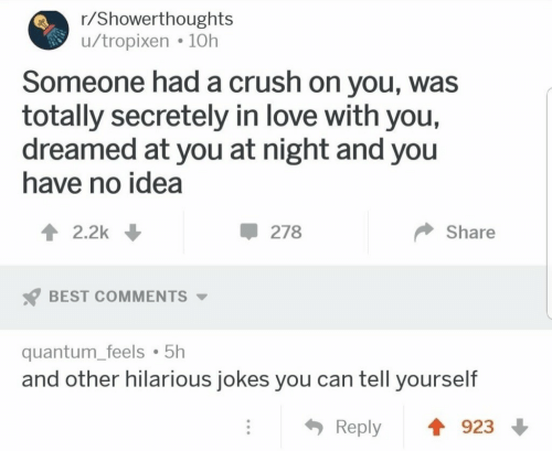 Crush, Love, and Best: r/Showerthoughts  u/tropixen 10h  Someone had a crush on you, was  totally secretely in love with you,  dreamed at you at night and you  have no idea  2.2k  278  Share  BEST COMMENTS  quantum_feels 5h  and other hilarious jokes you can tell yourself  923  Reply