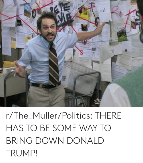 Donald Trump, Politics, and Trump: r/The_Muller/Politics: THERE HAS TO BE SOME WAY TO BRING DOWN DONALD TRUMP!