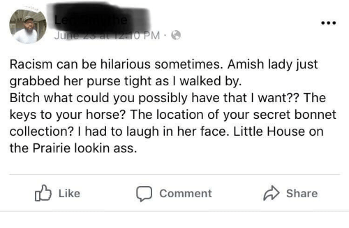 Little House on the Prairie: Racism can be hilarious sometimes. Amish lady just  grabbed her purse tight as I walked by  Bitch what could you possibly have that I want?? The  keys to your horse? The location of your secret bonnet  collection? I had to laugh in her face. Little House on  the Prairie lookin ass  Like  Comment  Share