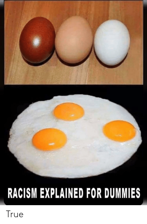 Racism, True, and For: RACISM EXPLAINED FOR DUMMIES True