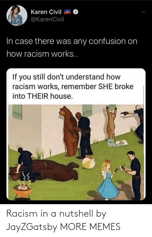 Nutshell: Racism in a nutshell by JayZGatsby MORE MEMES