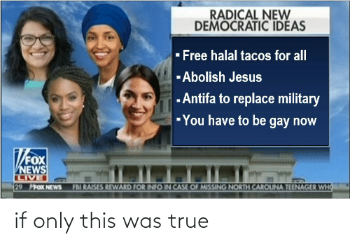 tacos: RADICAL NEW  DEMOCRATIC IDEAS  - Free halal tacos for all  -Abolish Jesus  - Antifa to replace military  -You have to be gay now  FOX  NEWS  LIVE  29 MFOX NEWS  FBI RAISES REWARD FOR INFO IN CASE OF MISSING NORTH CAROUNA TEENAGER WHO if only this was true