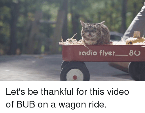 radio flyer: radio flyer  8O Let's be thankful for this video of BUB on a wagon ride.