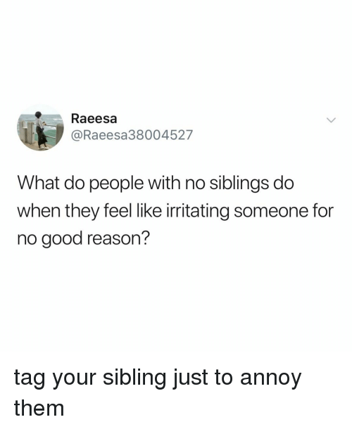 annoy: Raeesa  @Raeesa38004527  What do people with no siblings do  when they feel like irritating someone for  no good reason? tag your sibling just to annoy them