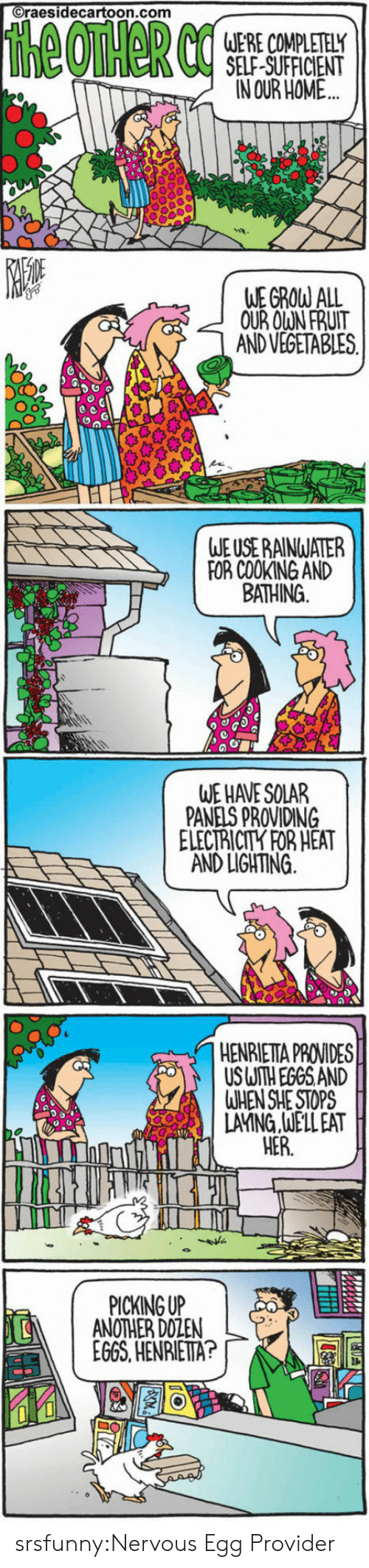 Tumblr, Blog, and Heat: raesidecartoon.com  SELF SUFFICIENT  IN OUR HOME  WE GROW ALL  OUR OWN FRUIT  AND VEGETABLES  Oo  WE USE RAINWATER  FOR COOKING AND  BATHING  WE HAVE SOLAR  PANELS PROVIDING  ELECTRICITY FOR HEAT  AND LIGHTING  HENRIETTA PROVIDES  USUTH EGGS AND  WHEN SHE STOPS  LAYNG.JELLEAT  HER.  PICKINGUP  ANOTHER DOZEN  EGGS,HENRIETA?  鬥 srsfunny:Nervous Egg Provider
