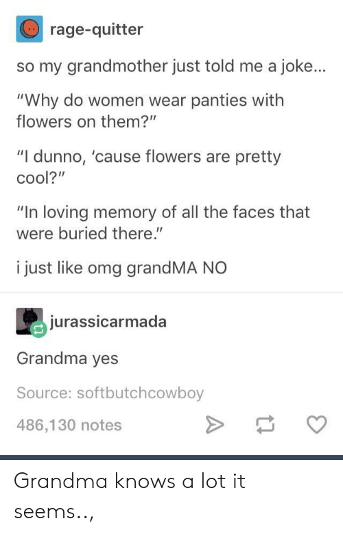 "Grandma, Omg, and Cool: rage-quitter  so my grandmother just told me a joke...  ""Why do women wear panties with  flowers on them?""  ""I dunno, 'cause flowers are pretty  cool?""  ""In loving memory of all the faces that  were buried there.""  i just like omg grandMA NO  jurassicarmada  Grandma yes  Source: softbutchcowboy  486,130 notes Grandma knows a lot it seems..,"
