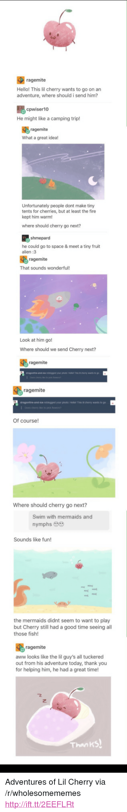 """Cherries: ragemite  Hello! This lil cherry wants to go on an  adventure, where should i send him?  cpwiser10  He might like a camping trip!  ragemite  What a great idea!  Unfortunately people dont make tiny  tents for cherries, but at least the fire  kept him warm!  where should cherry go next?  he could go to space & meet a tiny fruit  alien :3  ragemite  That sounds wonderful  Look at him go!  Where should we send Cherry next?  ragemite  ragemite  eblogged your photo l The i cherry warts to go  Of course!  Where should cherry go next?  Swim with mermaids and  nymphs 9  Sounds like fun!  the mermaids didnt seem to want to play  but Cherry still had a good time seeing al  those fish!  ragemite  aww looks like the lil guy's all tuckered  out from his adventure today, thank you  for helping him, he had a great time!  Thanks <p>Adventures of Lil Cherry via /r/wholesomememes <a href=""""http://ift.tt/2EEFLRt"""">http://ift.tt/2EEFLRt</a></p>"""