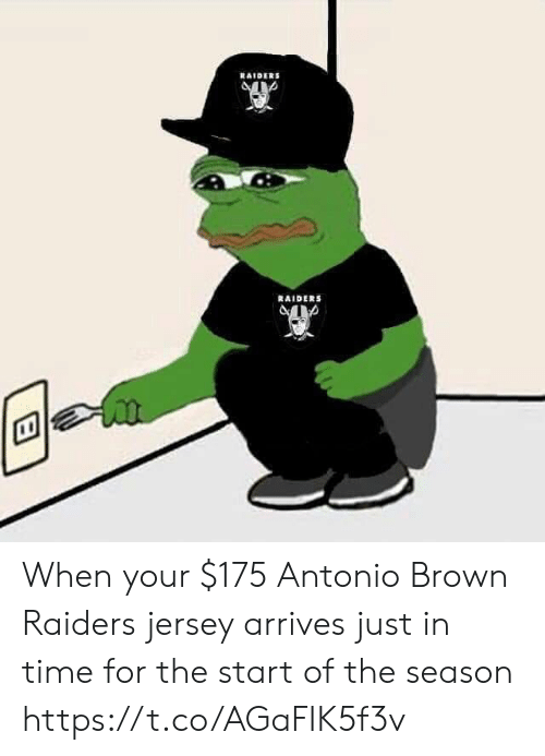 Antonio Brown: RAIDERS  RAIDERS When your $175 Antonio Brown Raiders jersey arrives just in time for the start of the season https://t.co/AGaFIK5f3v