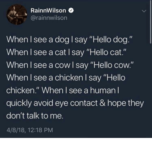 """Hello, Chicken, and Hope: RainnWilson  rainnwilson  When I see a dog say """"Hello dog.""""  When I see a cat I say Hello cat.  When l see a cowl say """"Hello cow.""""  When I see a chicken l say """"Hello  chicken."""" When I see a human l  quickly avoid eye contact & hope they  don't talk to me.  4/8/18, 12:18 PM"""