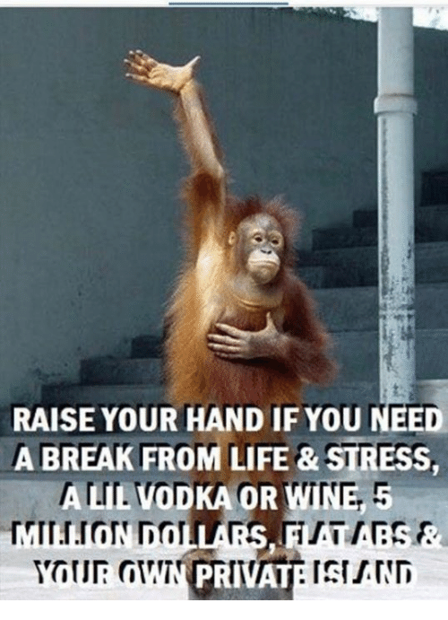 Need A Break: RAISE YOUR HAND IF YOU NEED  A BREAK FROM LIFE & STRESS,  ALIE VODKA OR WINE, 5  BREAK FROM  PRIVAT