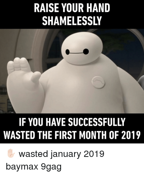 9gag, Memes, and 🤖: RAISE YOUR HAND  SHAMELESSLY  IF YOU HAVE SUCCESSFULLY  WASTED THE FIRST MONTH OF 2019 ✋🏻⠀ wasted january 2019 baymax 9gag