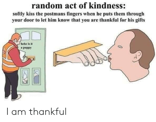 Puppy: random act of kindness:  softly kiss the postmans fingers when he puts them through  your door to let him know that you are thankful for his gifts  hehe is it  a puppy I am thankful