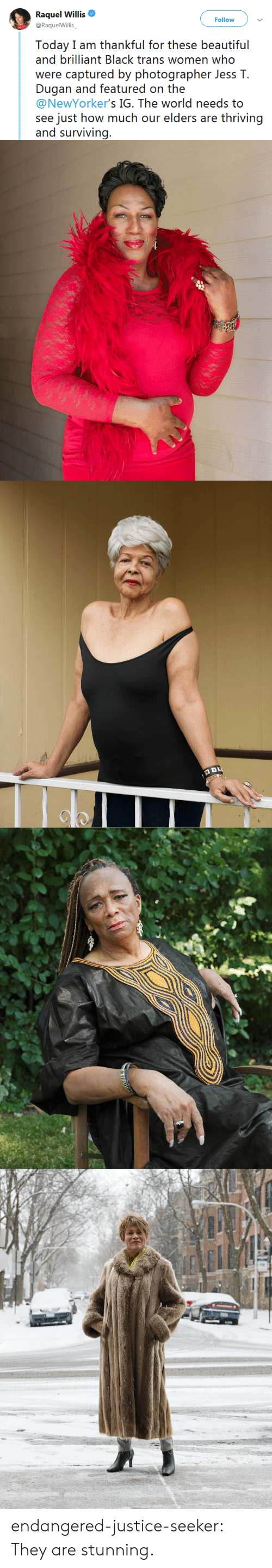 willis: Raquel Willis  @RaquelWillis  Follow  Today I am thankful for these beautiful  and brilliant Black trans women who  were (ipiured by phot(grapher Joss l.  Dugan and featured on the  @NewYorker's IG. The world needs to  see just how much our elders are thriving  and surviving. endangered-justice-seeker:  They are stunning.