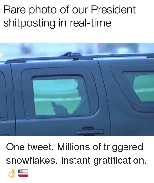 Gratification: Rare photo of our President  shitposting in real-time One tweet. Millions of triggered snowflakes. Instant gratification. 👌🏼🇺🇸