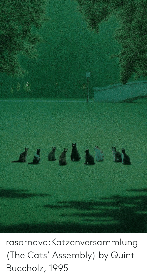 Cats: rasarnava:Katzenversammlung (The Cats' Assembly) by Quint Buccholz, 1995