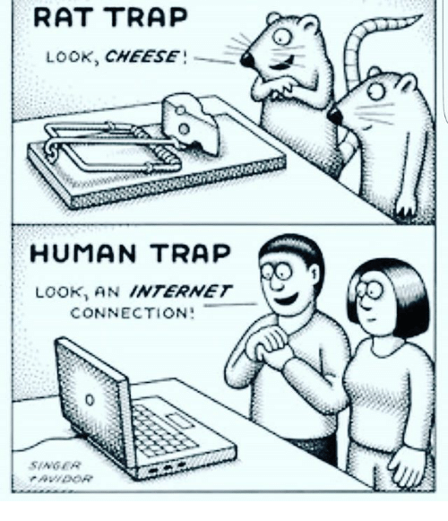 rat trap: RAT TRAP  LOOK, CHEESE  HUMAN TRAP  LOOK, AN INTERNET  CONNECTION:  SAGER