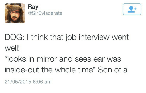 inside out: Ray  @SirEviscerate  DOG: I think that job interview went  well!  looks in mirror and sees ear was  inside-out the whole time Son of a  21/05/2015 6:06 am
