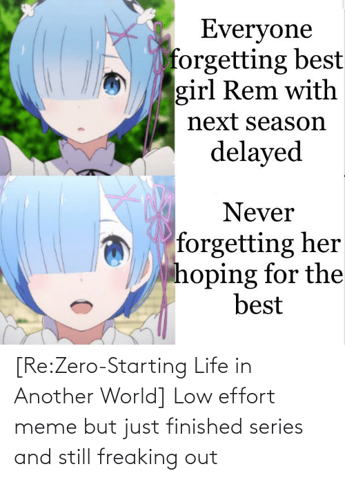 freaking: [Re:Zero-Starting Life in Another World] Low effort meme but just finished series and still freaking out