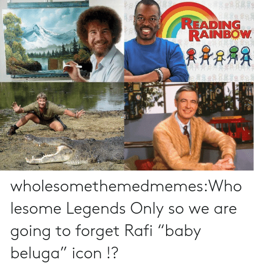 "reading rainbow: READING  RAINBOW wholesomethemedmemes:Wholesome Legends Only so we are going to forget Rafi ""baby beluga"" icon !?"