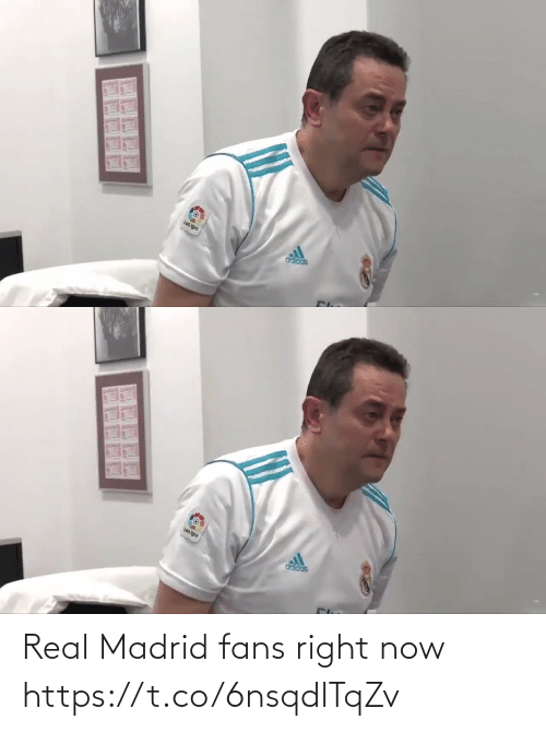 Real Madrid: Real Madrid fans right now  https://t.co/6nsqdlTqZv