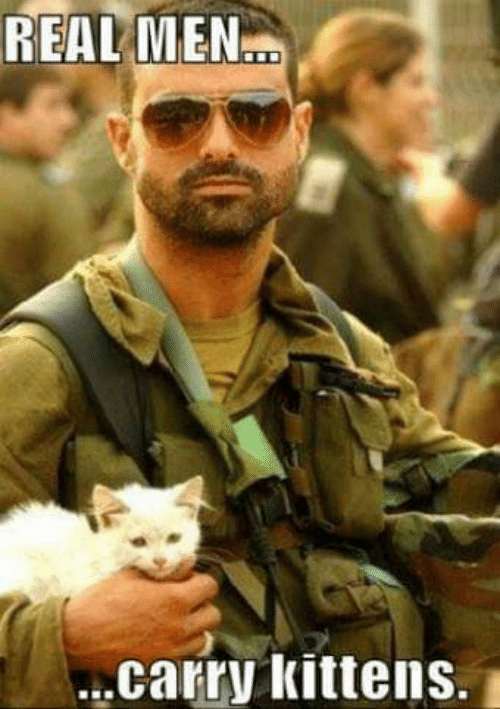 real men: REAL MEN...  carry kittens.