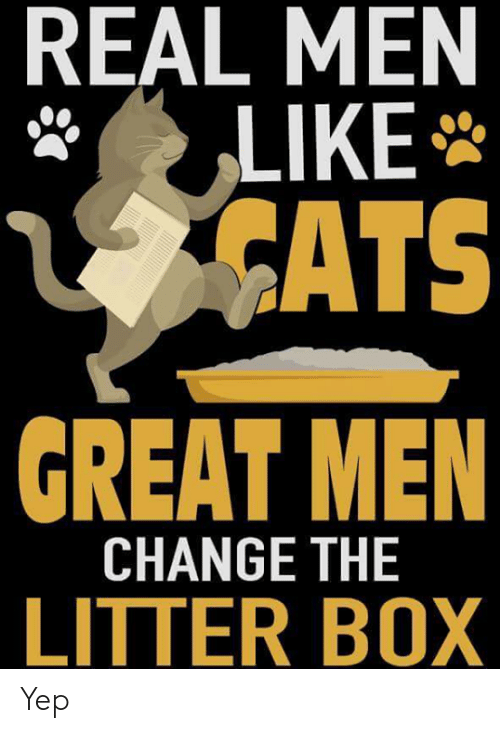 real men: REAL MEN  LIKE  CATS  GREAT MEN  CHANGE THE  LITTER BOX Yep