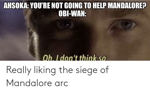 arc: Really liking the siege of Mandalore arc