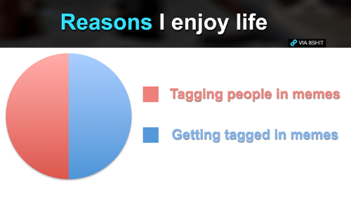 Life, Memes, and Tagged: Reasons I enjoy life  VIA 8SHIT  Tagging people in memes  Getting tagged in memes