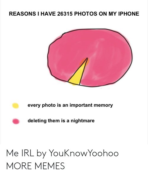 A Nightmare: REASONS I HAVE 26315 PHOTOS ON MY IPHONE  every photo is an important memory  deleting them is a nightmare Me IRL by YouKnowYoohoo MORE MEMES
