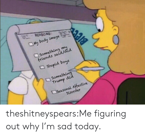 stupid boys: REASONS  My body image  Something  friends said/did  stupid boys  Somethin  Trump did  Seasonal Affective  Disorder theshitneyspears:Me figuring out why I'm sad today.