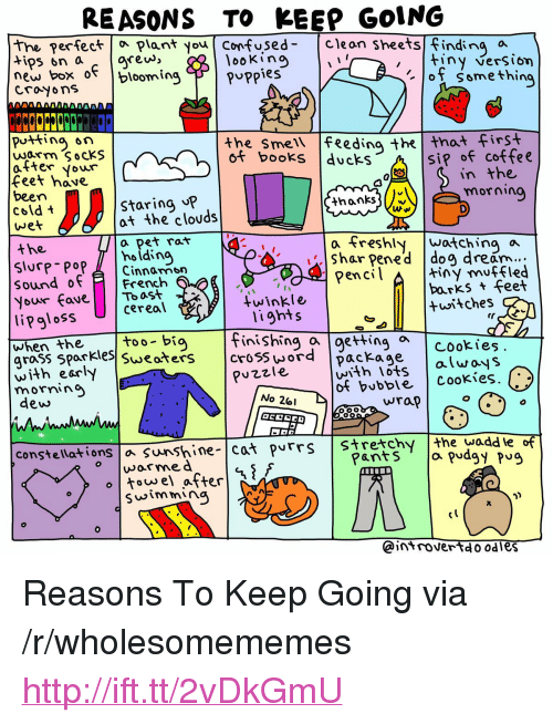 """rew: REASONS TO KEEP GOING  the perfectPlant you Confused- Cleon sheets finding a  looKino  ertec  rew, """"  new box o blooming F 