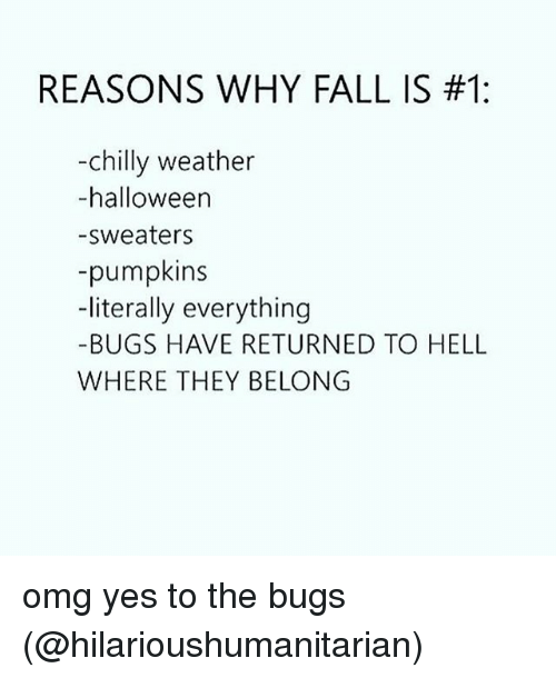 Fall, Halloween, and Memes: REASONS WHY FALL IS #1:  -chilly weather  -halloween  -sweaters  -pumpkins  -literally everything  -BUGS HAVE RETURNED TO HELL  WHERE THEY BELONG omg yes to the bugs (@hilarioushumanitarian)