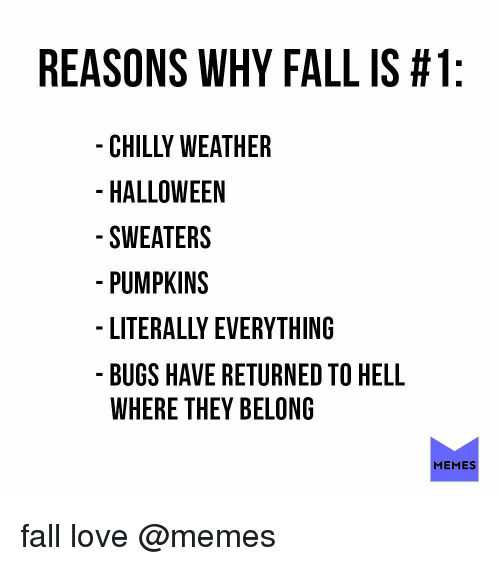Fall, Halloween, and Love: REASONS WHY FALL IS #1  CHILLY WEATHER  HALLOWEEN  SWEATERS  PUMPKINS  LITERALLY EVERYTHING  BUGS HAVE RETURNED TO HELL  WHERE THEY BELONG  MEMES fall love @memes