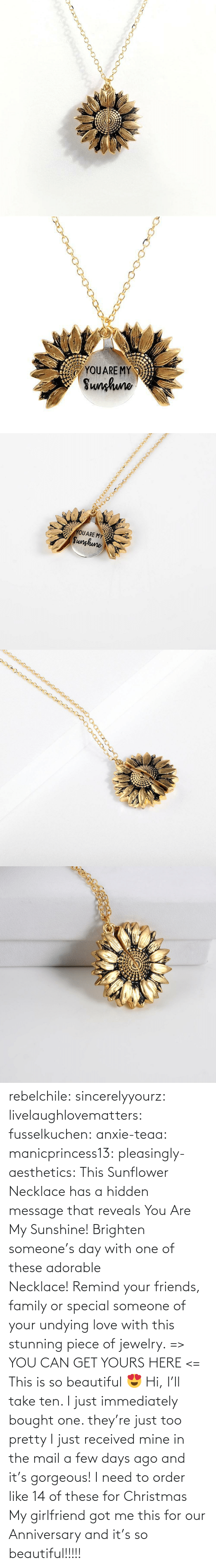 hidden: rebelchile:  sincerelyyourz:  livelaughlovematters:  fusselkuchen:  anxie-teaa:   manicprincess13:   pleasingly-aesthetics:  This Sunflower Necklace has a hidden message that reveals You Are My Sunshine! Brighten someone's day with one of these adorable Necklace! Remind your friends, family or special someone of your undying love with this stunning piece of jewelry. => YOU CAN GET YOURS HERE <=   This is so beautiful 😍    Hi, I'll take ten.    I just immediately bought one. they're just too pretty   I just received mine in the mail a few days ago and it's gorgeous!   I need to order like 14 of these for Christmas    My girlfriend got me this for our Anniversary and it's so beautiful!!!!!