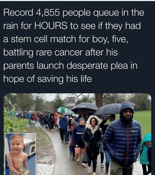 queue: Record 4,855 people queue in the  rain for HOURS to see if they had  a stem cell match for boy, five,  battling rare cancer after his  parents launch desperate plea in  hope of saving his life