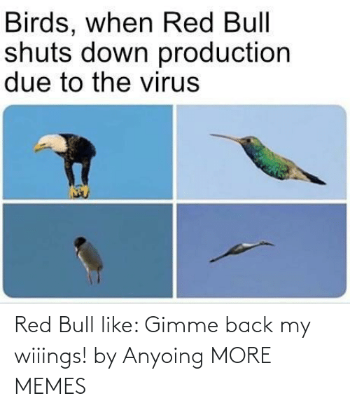 bull: Red Bull like: Gimme back my wiiings! by Anyoing MORE MEMES